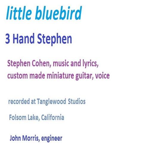 Little Bluebird by 3 Hand Stephen