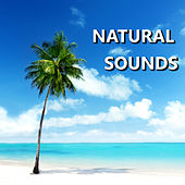 Natural Sounds by Natural Sounds