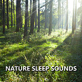 Nature Sleep Sounds by Sleep Sounds of Nature