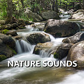 Nature Sounds by Sleep Sounds of Nature