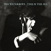 This Is the Sea (Deluxe Version) by The Waterboys