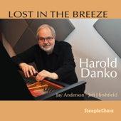 Lost in the Breeze by Harold Danko