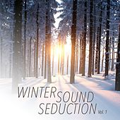 Winter Sound Seduction, Vol. 1 by Various Artists