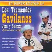 14 Super Exitos by Los Tremendos Gavilanes