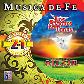 Musica de Fe by Various Artists