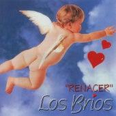 Renacer by Los Brios