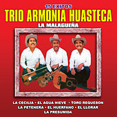15 Exitos by Trio Armonia Huasteca