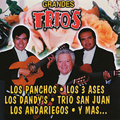 Grandes Trios by Various Artists