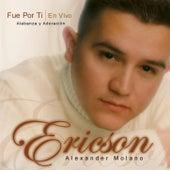 Fue Por Ti by Ericson Alexander Molano