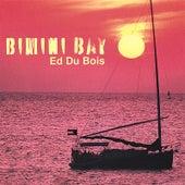 Bimini Bay by Ed Du Bois