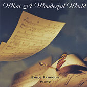 What a Wonderful World by Emile Pandolfi