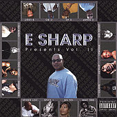 E Sharp Presents Vol. Ii by Various Artists