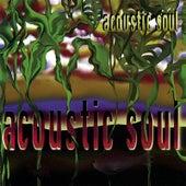 Acoustic Soul by Acoustic Soul