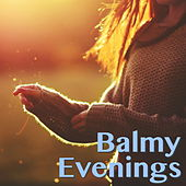 Balmy Evenings von Various Artists