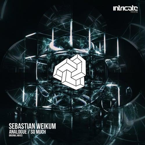 Analogue / So Much by Sebastian Weikum
