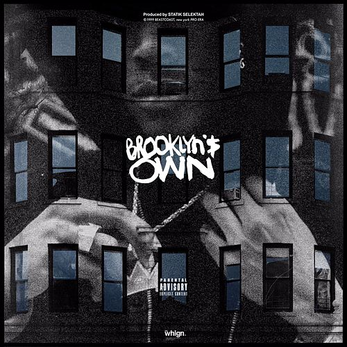 Brooklyn's Own by Joey Bada$$