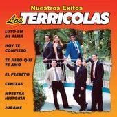 Nuestros Exitos by Los Terricolas