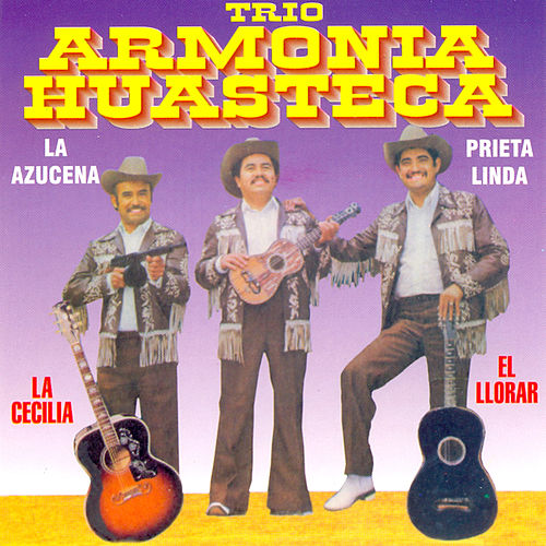 12 Grandes Exitos by Trio Armonia Huasteca