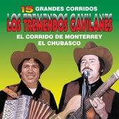 15 Grandes Corridos by Los Tremendos Gavilanes