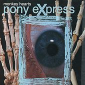 Monkey Hearts by Pony Express