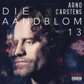 Die Aandblom 13 by Arno Carstens