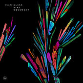 Glass Bird Movement by Isan