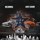 What My City Like by Lucky Luciano