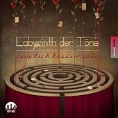 Labyrinth der Töne, Vol. 16 - Deep & Tech-House Music by Various Artists