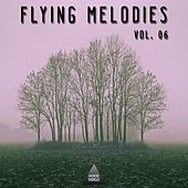 Fyling Melodies, Vol. 06 by Various Artists
