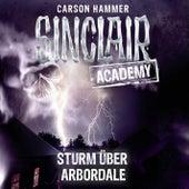 Sinclair Academy, Folge 4: Sturm über Arbordale by John Sinclair