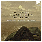 Schubert: Piano trios, Op. 99 & 100 by Various Artists