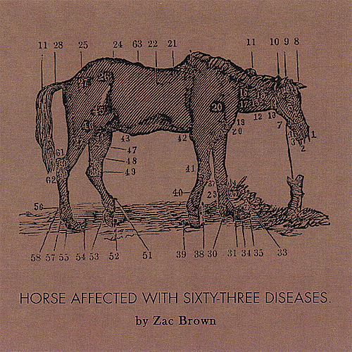 Ride the Sick Horse by Zac Brown