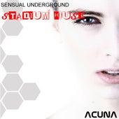 Sensual Underground Stadium House by Various Artists