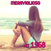 Meraviglioso by Disco Fever