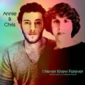 I Never Knew Forever by Annie