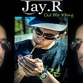 Did Me Wrong by Jay R