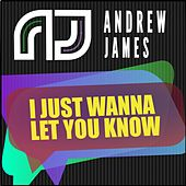 I Just Wanna Let You Know by Andrew James