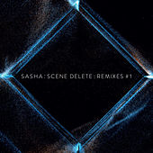 Scene Delete Remixes, Pt. 1 by Sasha