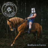 Brothers In Farms by Steve 'n' Seagulls