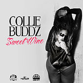 Sweet Wine - Single by Collie Buddz