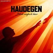 Bleib einfach hier (#008 Independent Day) von Haudegen