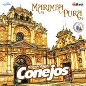 Marimba Pura. Música de Guatemala para los Latinos by Internacionales Conejos