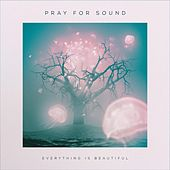 Everything Is Beautiful by Pray for Sound