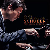 Schubert: Piano Sonatas, D. 845 & 958 by Louis Schwizgebel