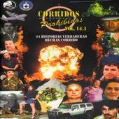 Corridos Prohibidos, Vol. 14 by Various Artists