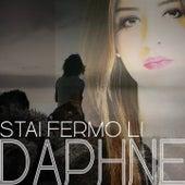 Stai fermo li by Daphne