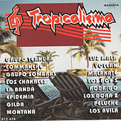 Tropicalisima by Various Artists