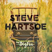 The Big Fix by Steve Hartsoe