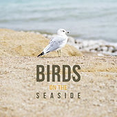 Birds on the Seaside – Fabulous Nature Music of Birds and Ocean Waves, Best Relaxing Music for Feel Energy, Calming Sounds of New Age Music by Sounds of Nature Relaxation