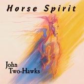 Horse Spirit by John Two-Hawks